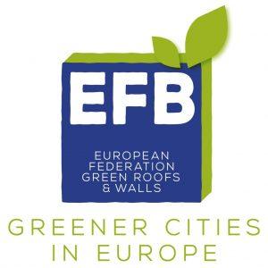 EFB logo